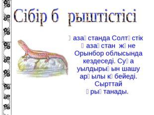 Қазақстанда Солтүстік Қазақстан және Орынбор облысында кездеседі. Суға уылдыр