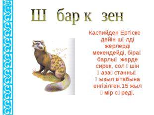 Каспийден Ертіске дейін шөлді жерлерді мекендейді, бірақ барлық жерде сирек,