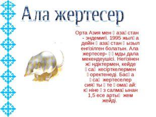 Орта Азия мен Қазақстан - эндемигі. 1995 жылға дейін Қазақстан Қызыл енгізілг