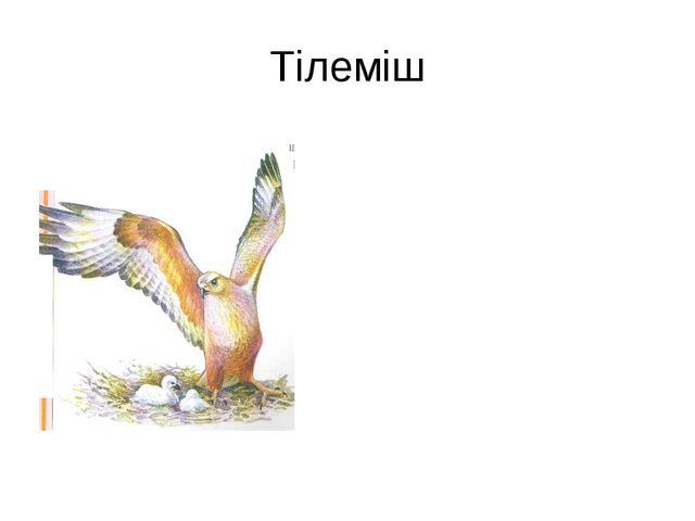 Тілеміш