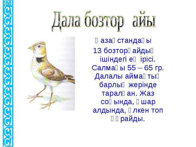 Қазақстандағы 13 бозторғайдың ішіндегі ең ірісі. Салмағы 55 – 65 гр. Далалы а...