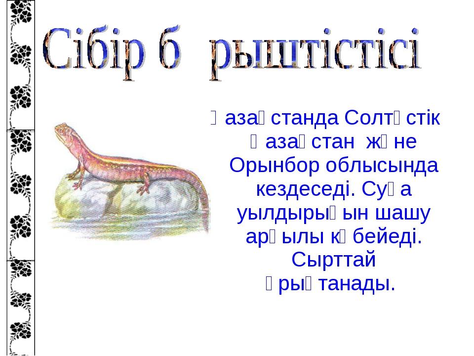 Қазақстанда Солтүстік Қазақстан және Орынбор облысында кездеседі. Суға уылдыр...