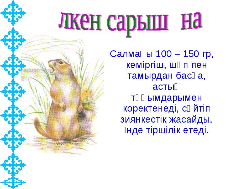 Салмағы 100 – 150 гр, кеміргіш, шөп пен тамырдан басқа, астық тұқымдарымен ко...