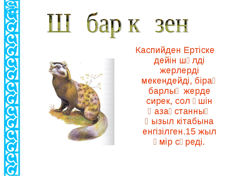 Каспийден Ертіске дейін шөлді жерлерді мекендейді, бірақ барлық жерде сирек,...