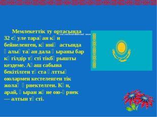 Қазақстан Республикасының мемлекеттiк туы Мемлекеттік ту ортасында 32 сәуле