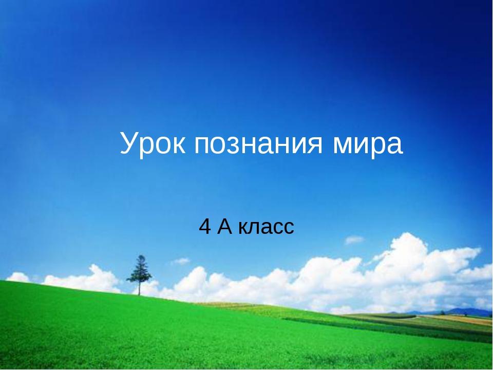 Урок познания мира 4 А класс