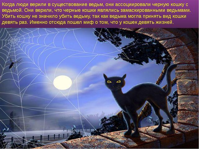Когда люди верили в существование ведьм, они ассоциировали черную кошку с вед...