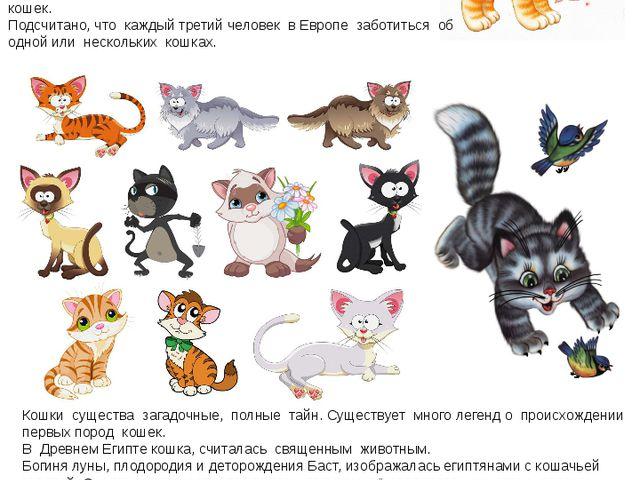 Кошки существа загадочные, полные тайн. Существует много легенд о происхожден...