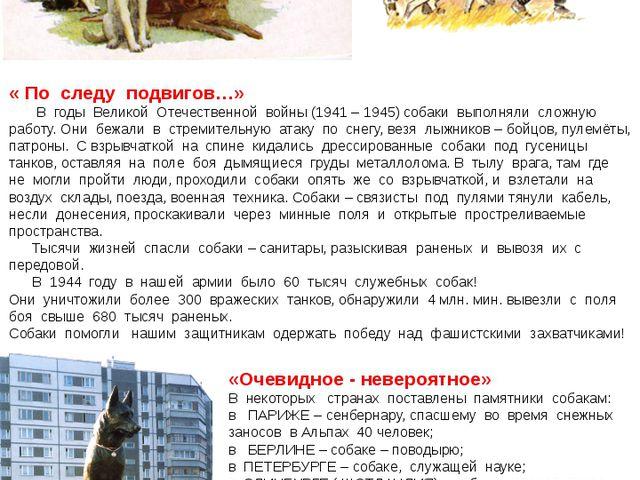« По следу подвигов…» В годы Великой Отечественной войны (1941 – 1945) собаки...