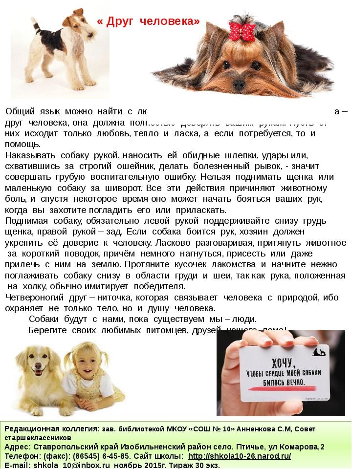 Общий язык можно найти с любой собакой, главное знать подход. Собака – друг ч...