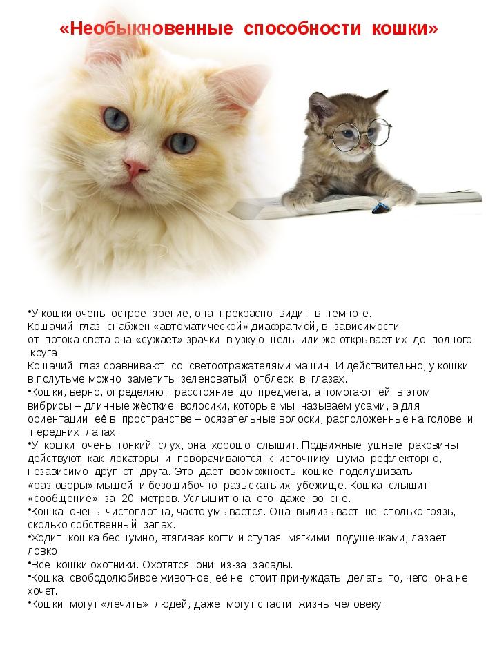 «Необыкновенные способности кошки» У кошки очень острое зрение, она прекрасно...