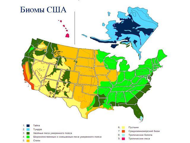 Биомы США