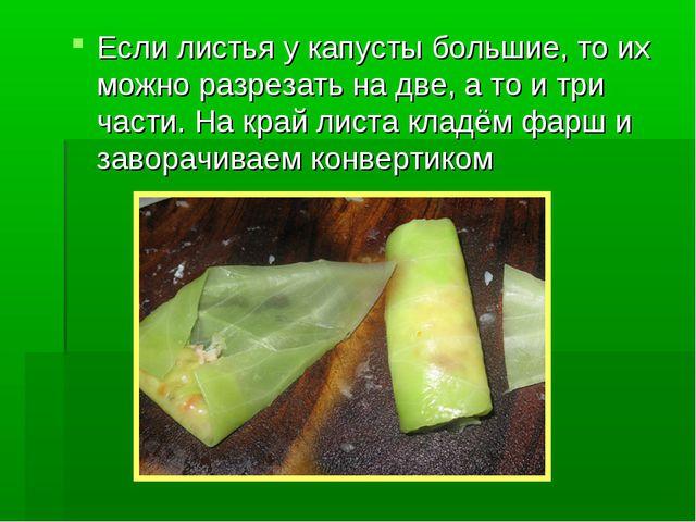 Если листья у капусты большие, то их можно разрезать на две, а то и три части...