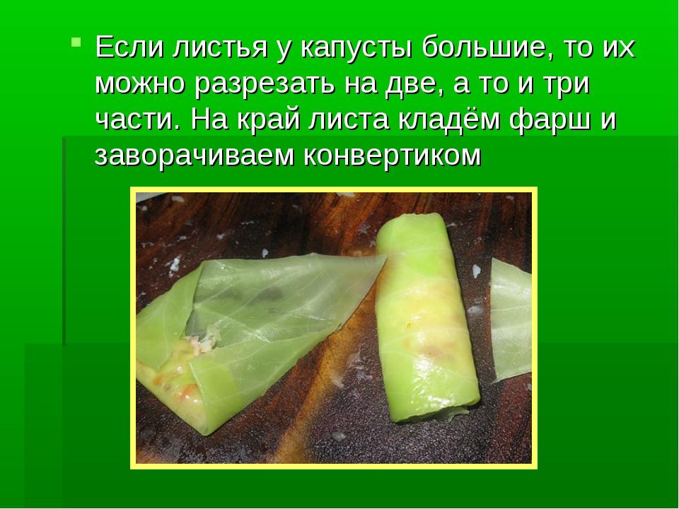 можно ли обрывать листья на капусте