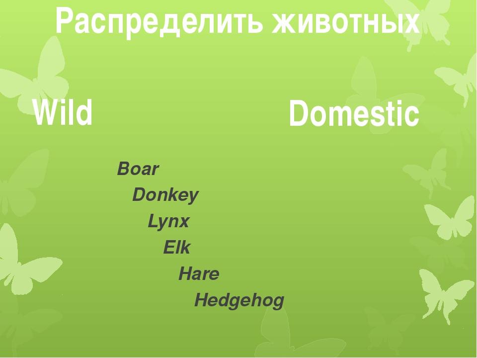 Распределить животных Wild Domestic Boar Donkey Lynx Elk Hare Hedgehog