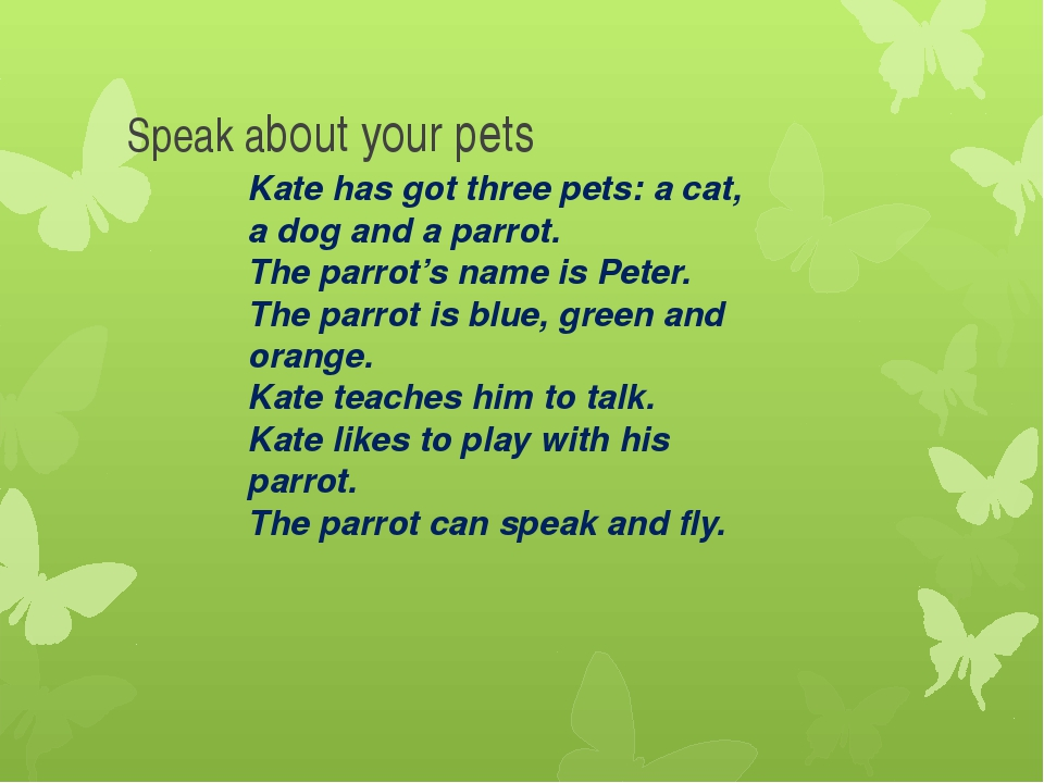 Kate has got three pets: a cat, a dog and a parrot. The parrot's name is Pete...