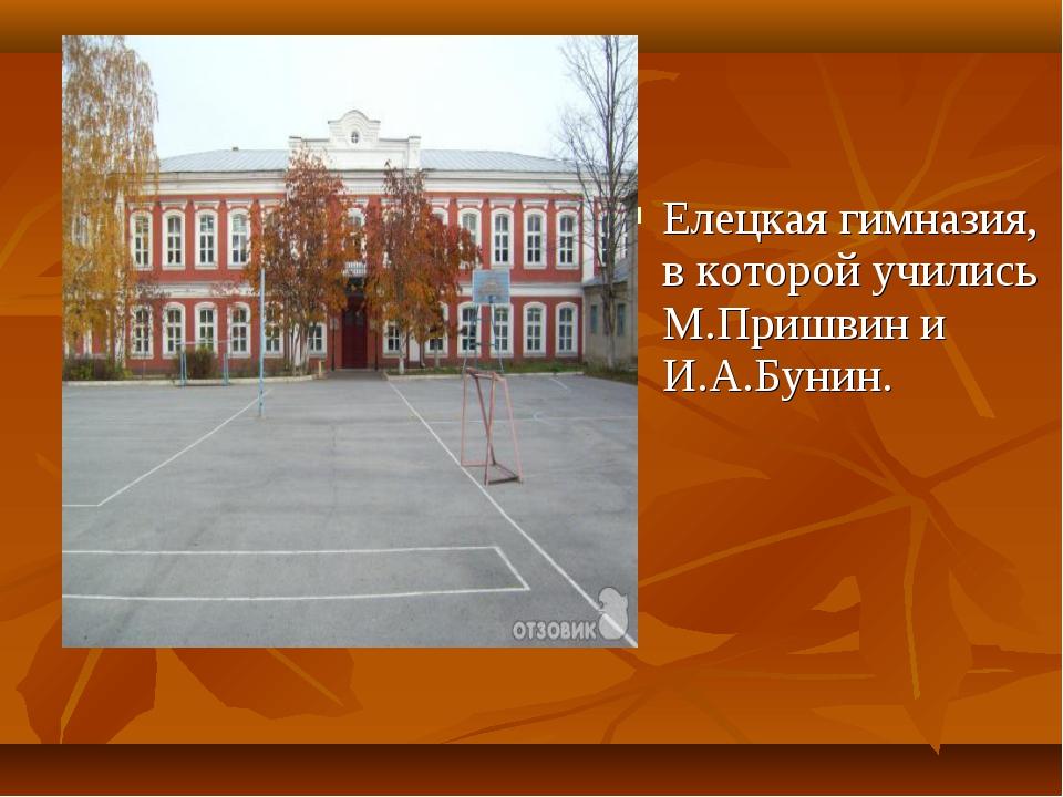 Елецкая гимназия, в которой учились М.Пришвин и И.А.Бунин.