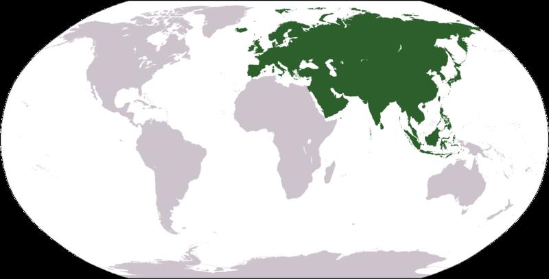 Евразия.png