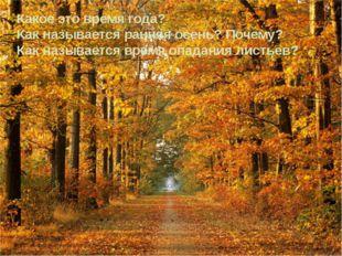 Какое это время года? Как называется ранняя осень? Почему? Как называется вре