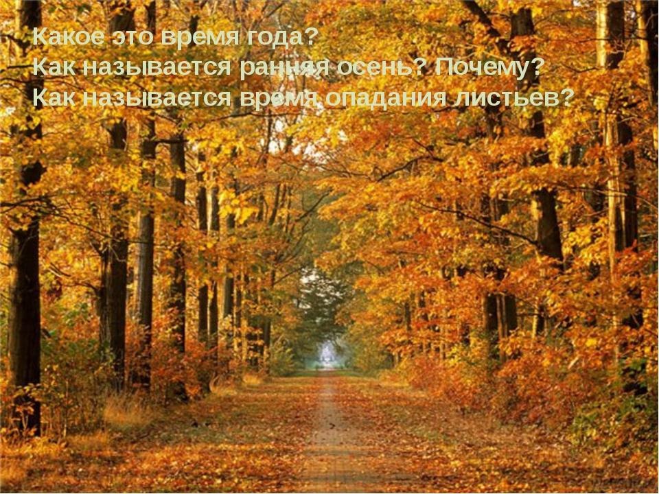 Какое это время года? Как называется ранняя осень? Почему? Как называется вре...
