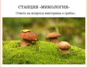 СТАНЦИЯ «МИКОЛОГИЯ» Ответь на вопросы викторины о грибах.