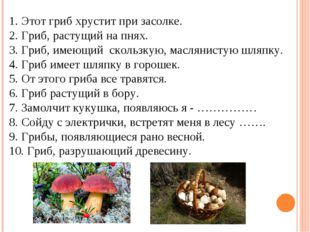 Этот гриб хрустит при засолке. Гриб, растущий на пнях. Гриб, имеющий скользк
