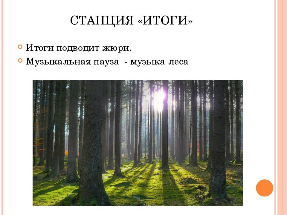 СТАНЦИЯ «ИТОГИ» Итоги подводит жюри. Музыкальная пауза - музыка леса