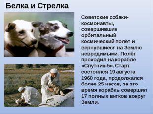 Белка и Стрелка Советские собаки-космонавты, совершившие орбитальный космичес