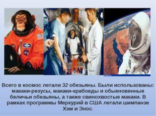 Всего в космос летали 32 обезьяны. Были использованы: макаки-резусы, макаки-к
