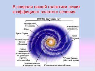 В спирали нашей галактики лежит коэффициент золотого сечения