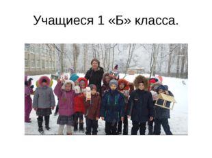 Учащиеся 1 «Б» класса.