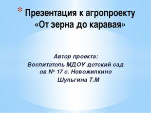 Автор проекта: Воспитатель МДОУ детский сад ов № 17 с. Новожилкино Шульгина Т