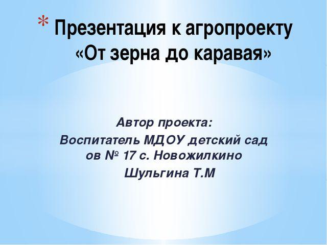Автор проекта: Воспитатель МДОУ детский сад ов № 17 с. Новожилкино Шульгина Т...