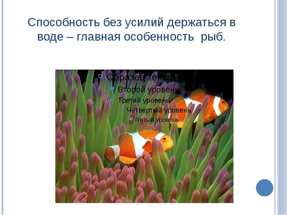 Способность без усилий держаться в воде – главная особенность рыб.