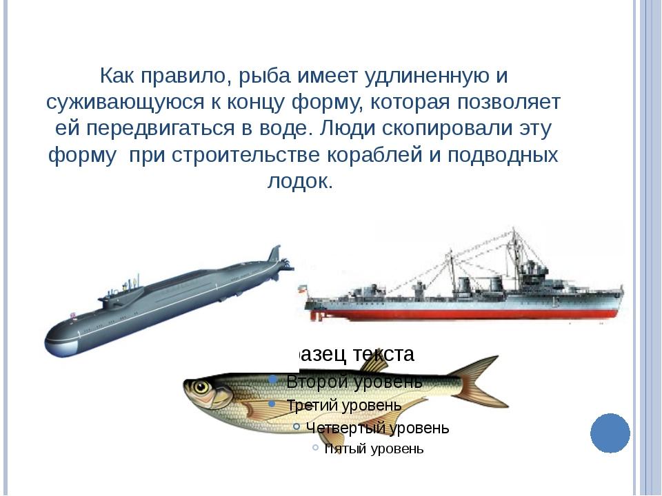 Как правило, рыба имеет удлиненную и суживающуюся к концу форму, которая позв...