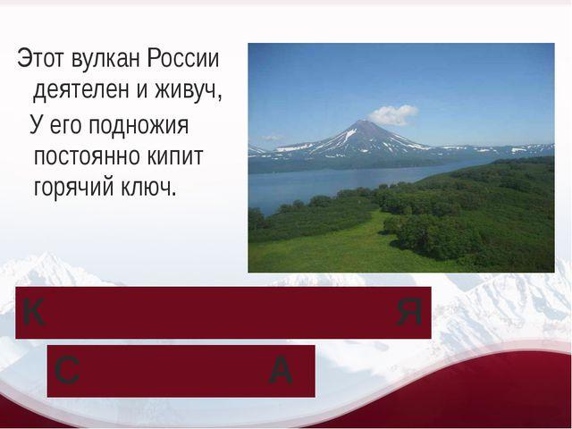 Этот вулкан России деятелен и живуч, У его подножия постоянно кипит горячий к...