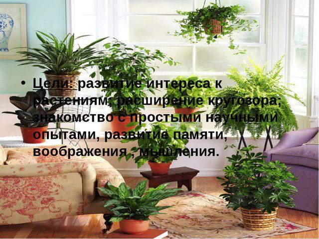 Цели: развитие интереса к растениям; расширение кругозора; знакомство с прост...