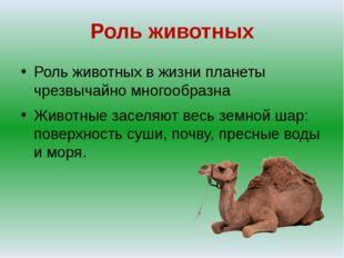 Роль животных Роль животных в жизни планеты чрезвычайно многообразна Животные