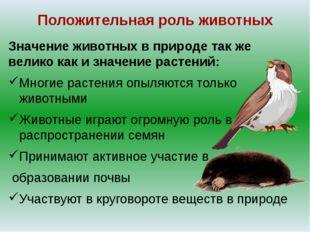 Положительная роль животных Значение животных в природе так же велико как и з