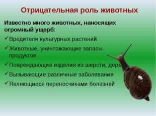 Отрицательная роль животных Известно много животных, наносящих огромный ущерб