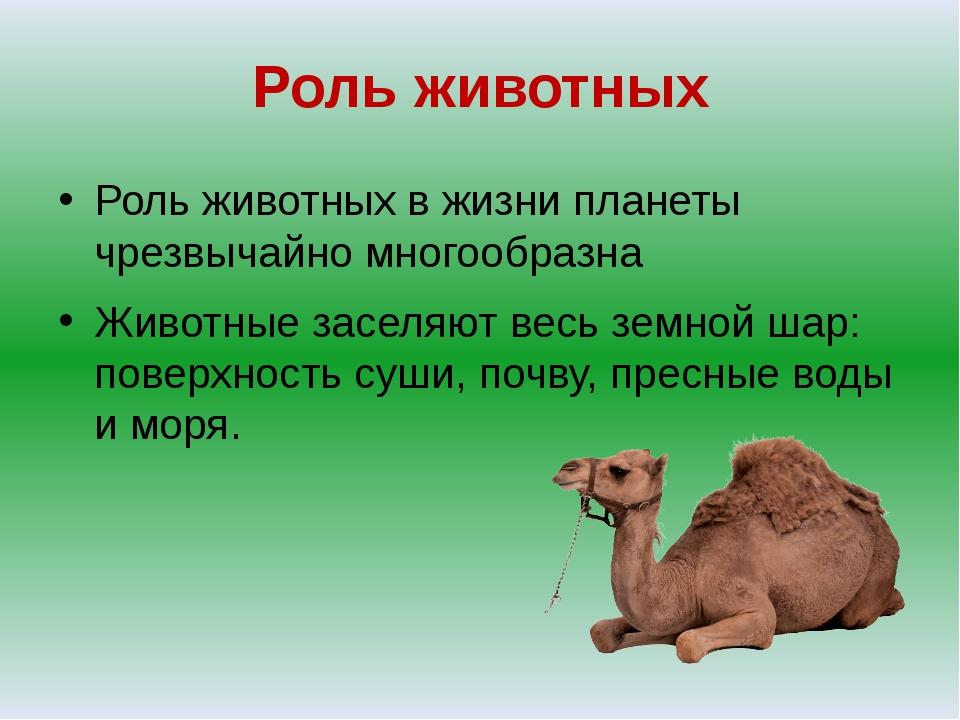 Роль животных Роль животных в жизни планеты чрезвычайно многообразна Животные...