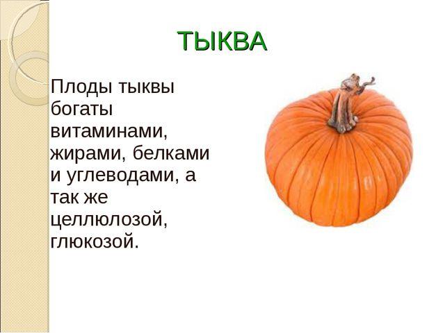 ТЫКВА Плоды тыквы богаты витаминами, жирами, белками и углеводами, а так же...