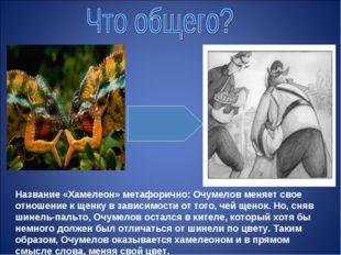 Название «Хамелеон» метафорично: Очумелов меняет свое отношение к щенку в зав