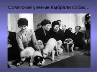 Советские учёные выбрали собак…