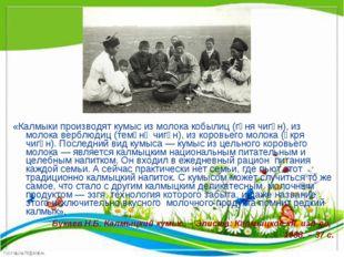 «Калмыки производят кумыс из молока кобылиц (гүня чигән), из молока верблюдиц