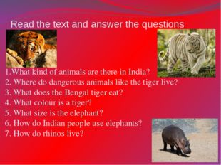 Read the text and answer the questions 1.What kind of animals are there in In