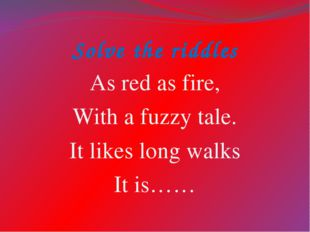 Solve the riddles As red as fire, With a fuzzy tale. It likes long walks It i