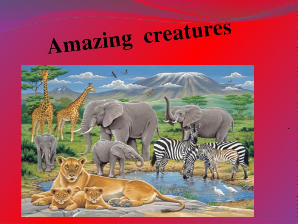 . . Amazing creatures