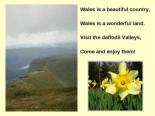 Wales is a beautiful country, Wales is a wonderful land. Visit the daffodil V