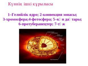 1–Гелийлік ядро; 2-конвекция зонасы; 3-хромосфера;4-фотосфера; 5–күн дақтары;